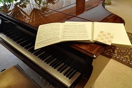 Концерт Чтобы музыка звучала Курскому музыкальному колледжу-интернату слепых посвящается _450.jpg