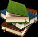 Плоскопечатные книги
